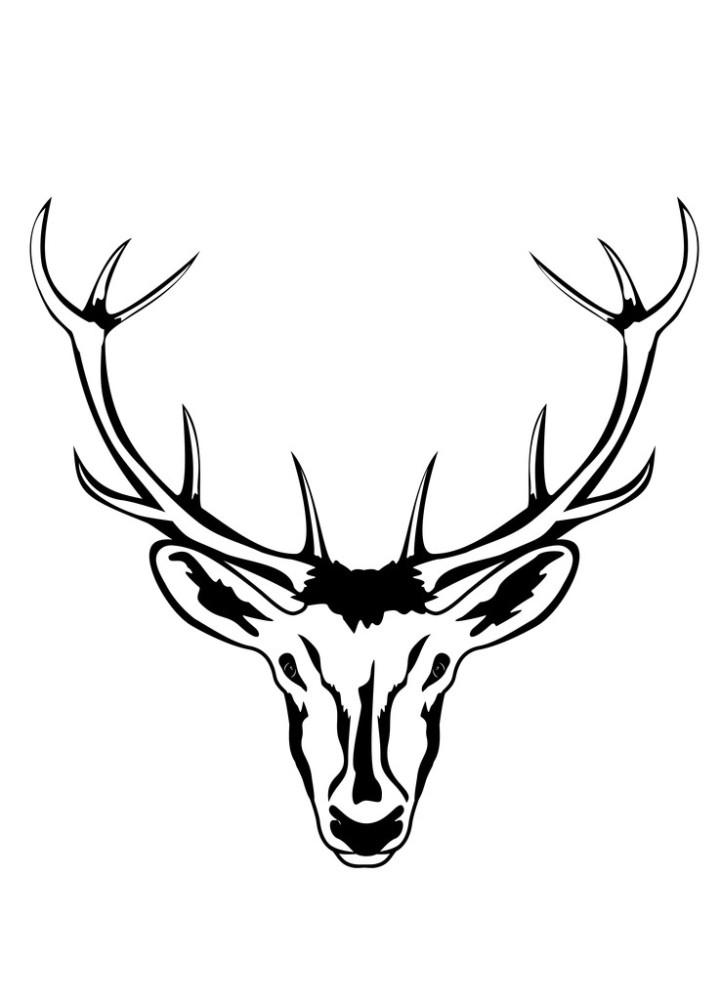 白色,捕猎,动物,奖杯,口络,猎人,羚羊,鹿,鹿角,矢量图,纹身,雄鹿图片图片