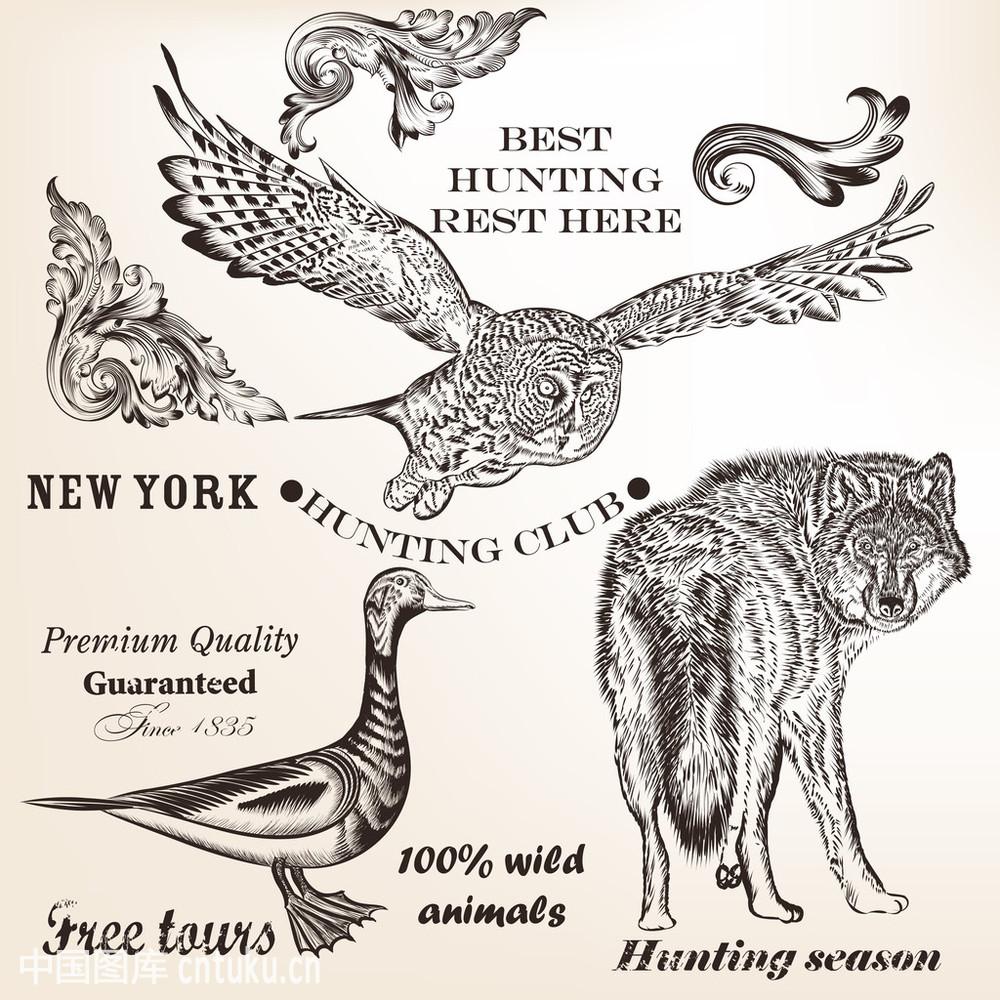 标签,捕猎,尺,动物,分线规,复古,华丽的,季节,狼,猫头鹰,矢量图,漩涡图片