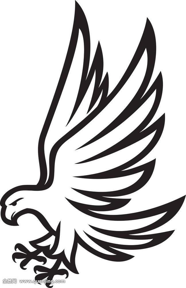 空气,北美,美洲,动物,攻击,鸟,盾徽,十字架,设计,鹰,象征,信念,猎鹰图片