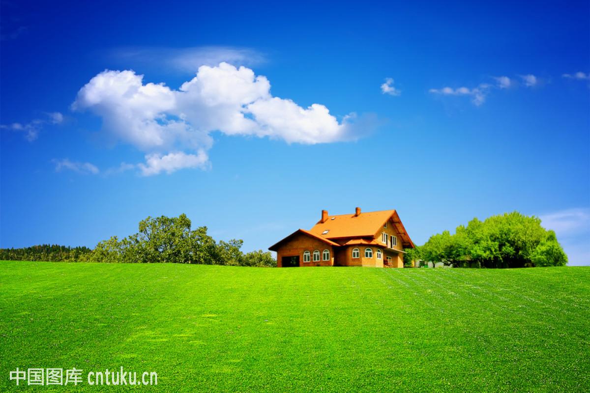 绿色,买,农业,全景构图,人,森林,商务,输入设备,天空,投资,新的,幸福图片