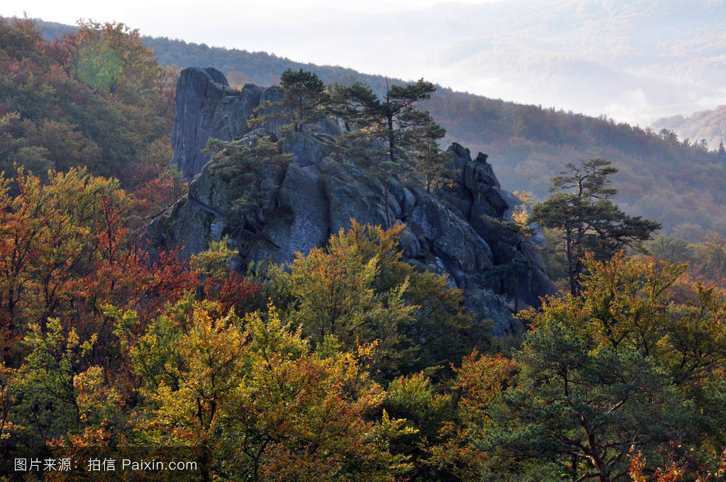 hiv鸡尺ad�����_喀尔巴阡,山毛榉,bolekhiv,小径,dovbush,黄色的,徒步旅行,自然,季节