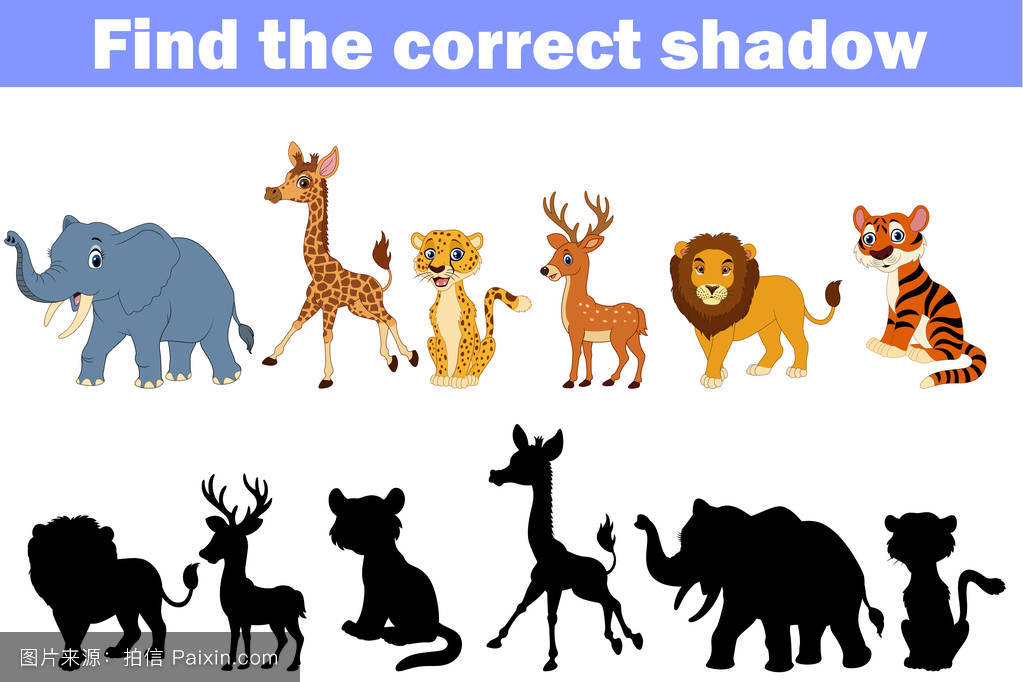 游89_卡通,非洲,猫,性格,长颈鹿,动物园,小猫,线,逻辑,游戏,玩,收集,活动