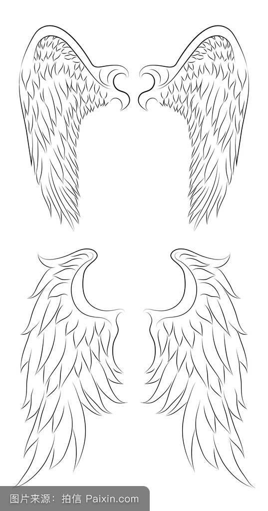 自由,要素,一对,哥特式,素描,动物,酿造的,鹰,羽毛,插图,装饰,纹身图片