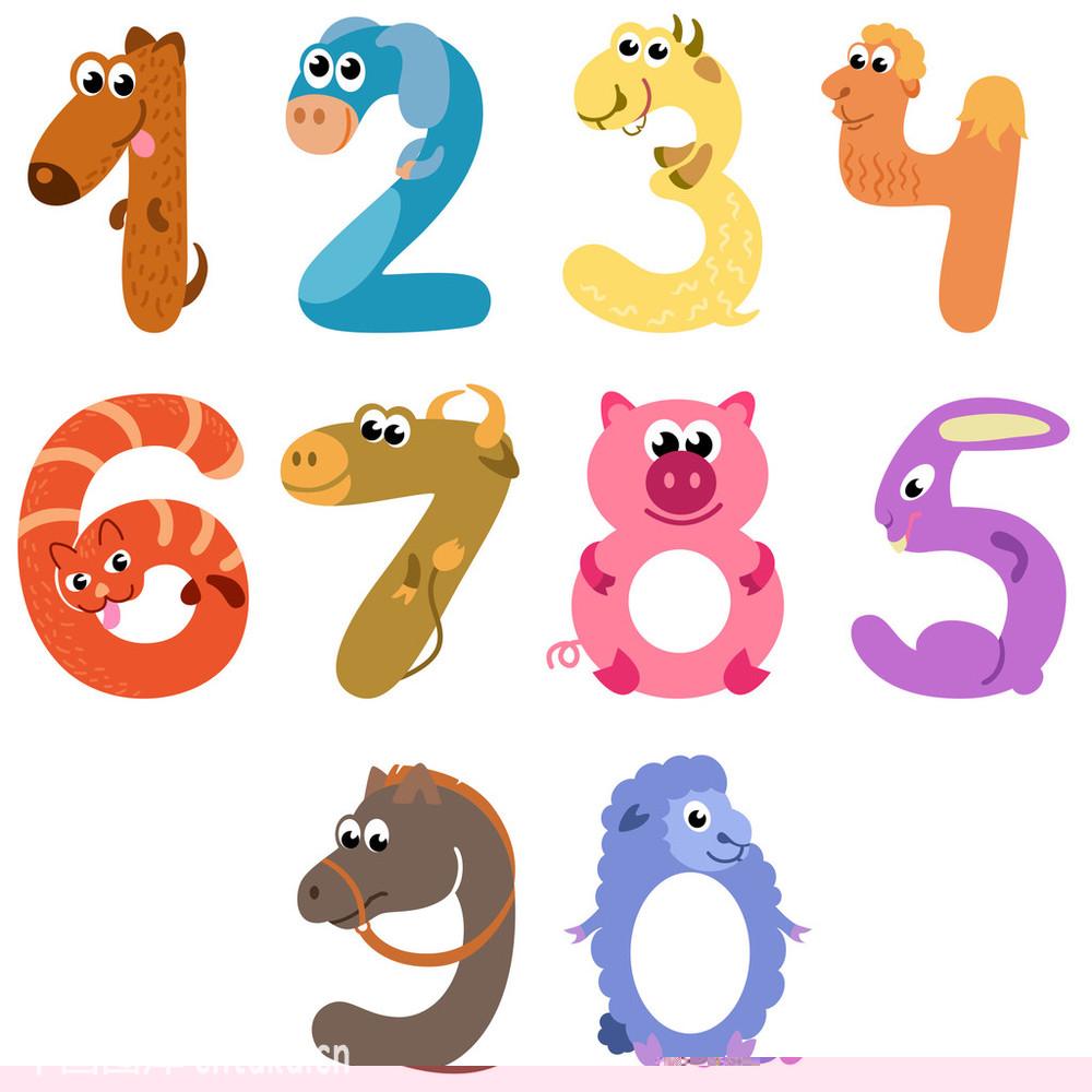 计数,数学,数字,幼犬,小猫,学习,幽默,猪,象征,可爱,兔子,野生动物园图片
