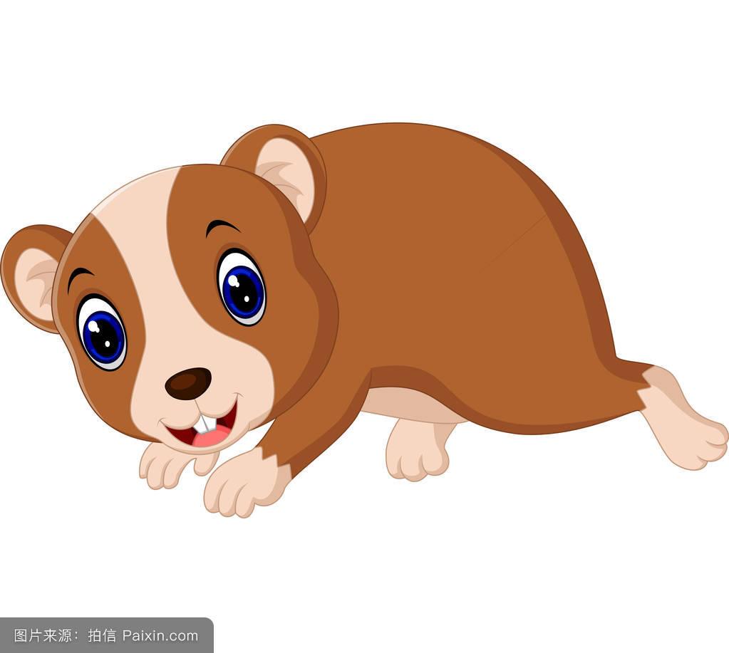 卡通,哺乳动物,牙齿,仓鼠,啮齿类动物,头发,啃,自然,鼠标,性格,挥手大熊猫的分布大图片