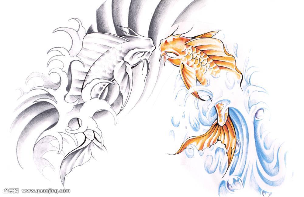 金鱼纹身手稿线条分享展示 (1000x650)图片图片