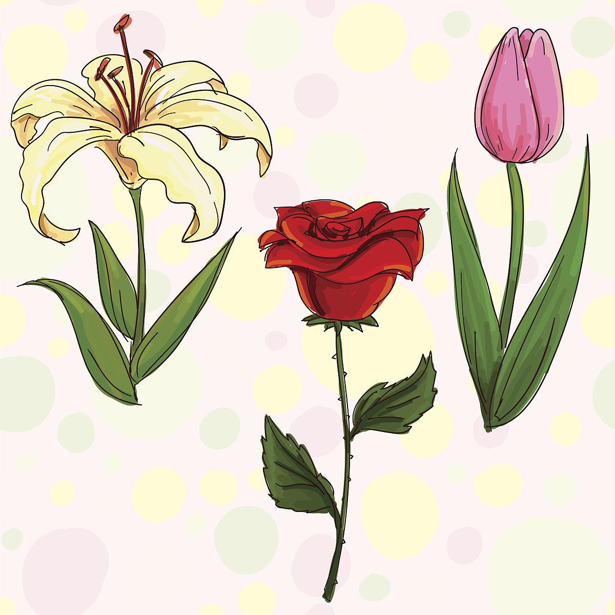 手绘花卉花卉素描图片大全素描花卉铅笔画手绘