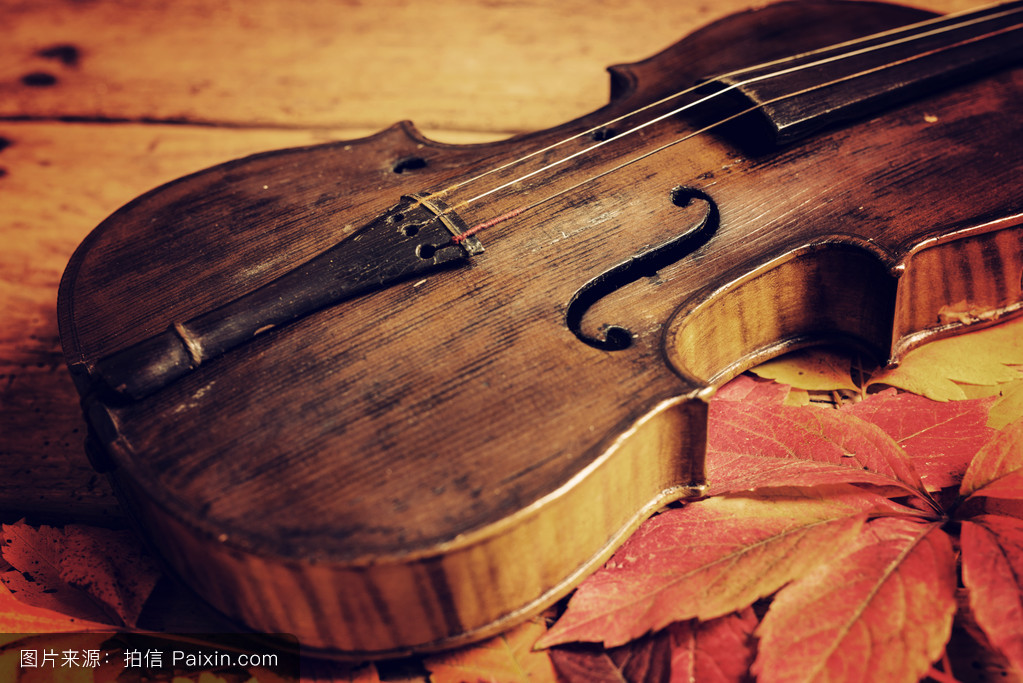 古老的木制木桌上的旧小提琴和秋叶图片