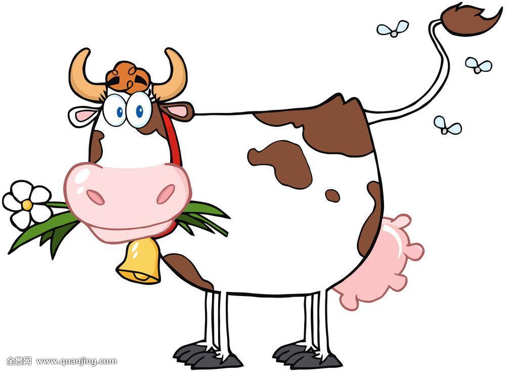彩色,乡村,场景,图像,哺乳动物,花,象征,夏天,牛,漂亮,自然,吃,吉祥物图片