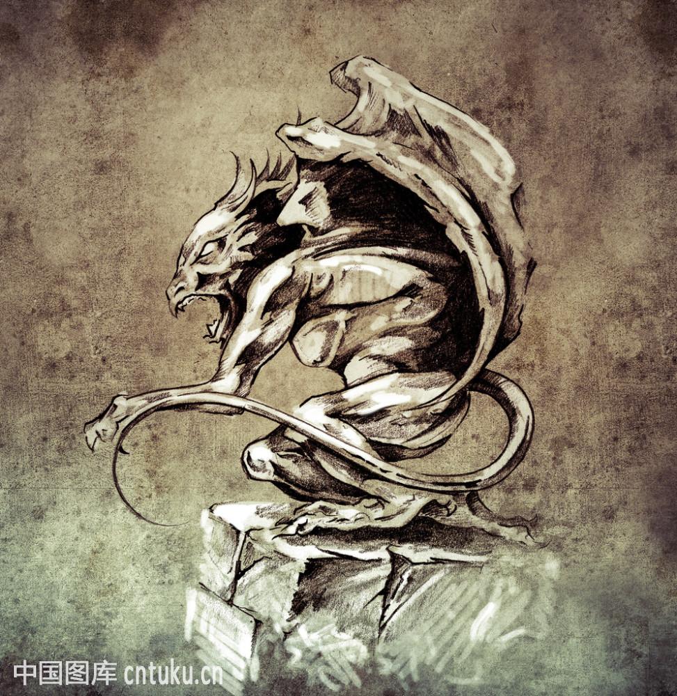白色,传统,怪物,花,卡通,龙,女服,设计,神话,纹身,仙女,小精灵,新的图片