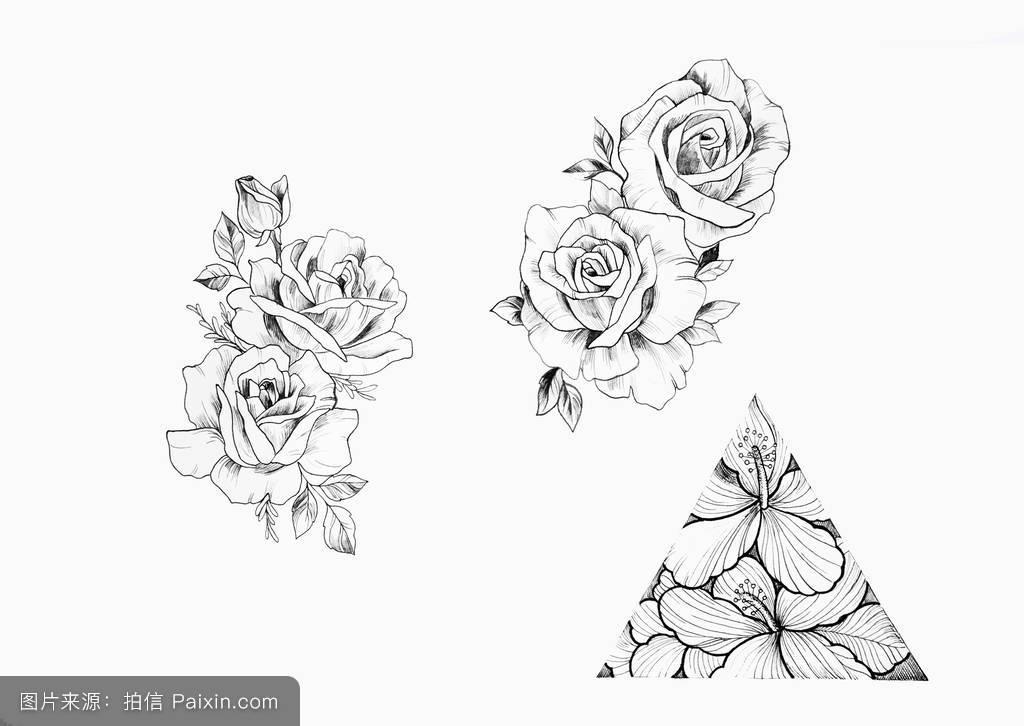 设计,花瓣,黑色和白色,植物区系,白色的背景,书,成人,纹身草图,枝花