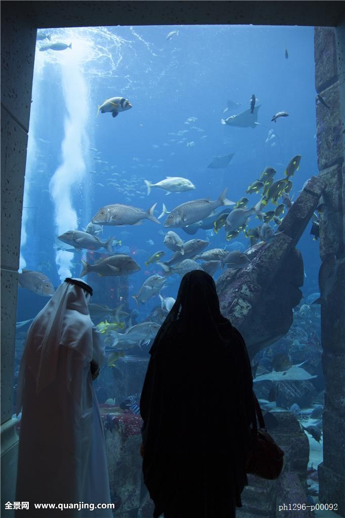 亚特兰蒂斯酒店水族馆图片