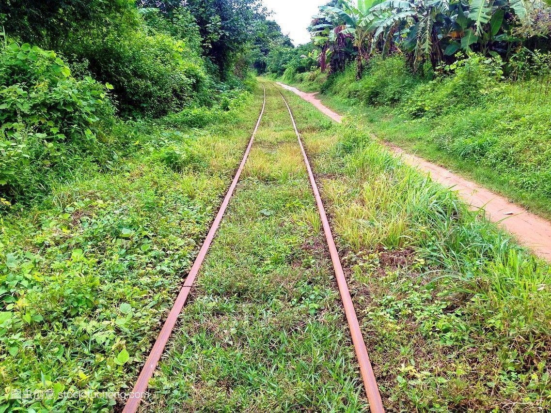 被抛弃,亚洲,方向,东,绿色,缅甸,丛林,运输,列车,铁路,旅行,回归线