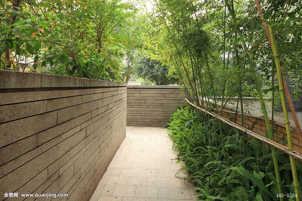 安静,生长,宁静,中国,中式建筑,路,竹林,小道,方向,前方,景观,墙,水景图片