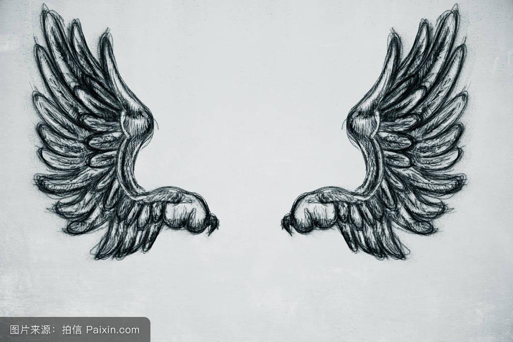 一对,哥特式,滑翔,素描,固体,动物,鹰,羽毛,插图,装饰,和平,纹身,墙图片