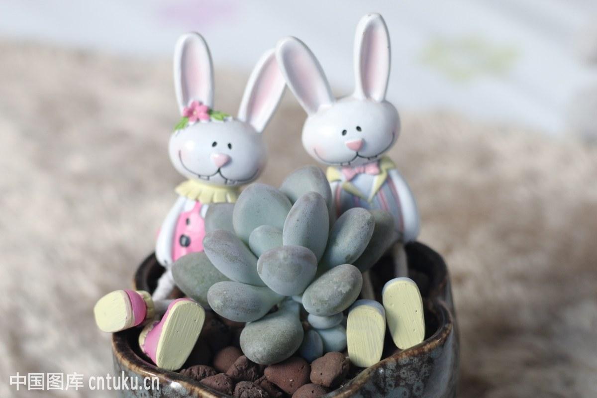 特写,玩具,亚洲,中国文化,礼品,儿童,生活,兔子,四川,群居,兔子,大图片