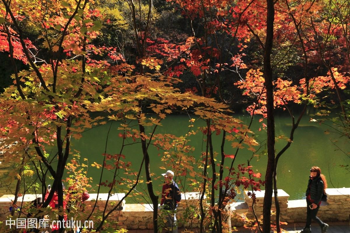 辽宁蒲石河森林公园图分享展示图片
