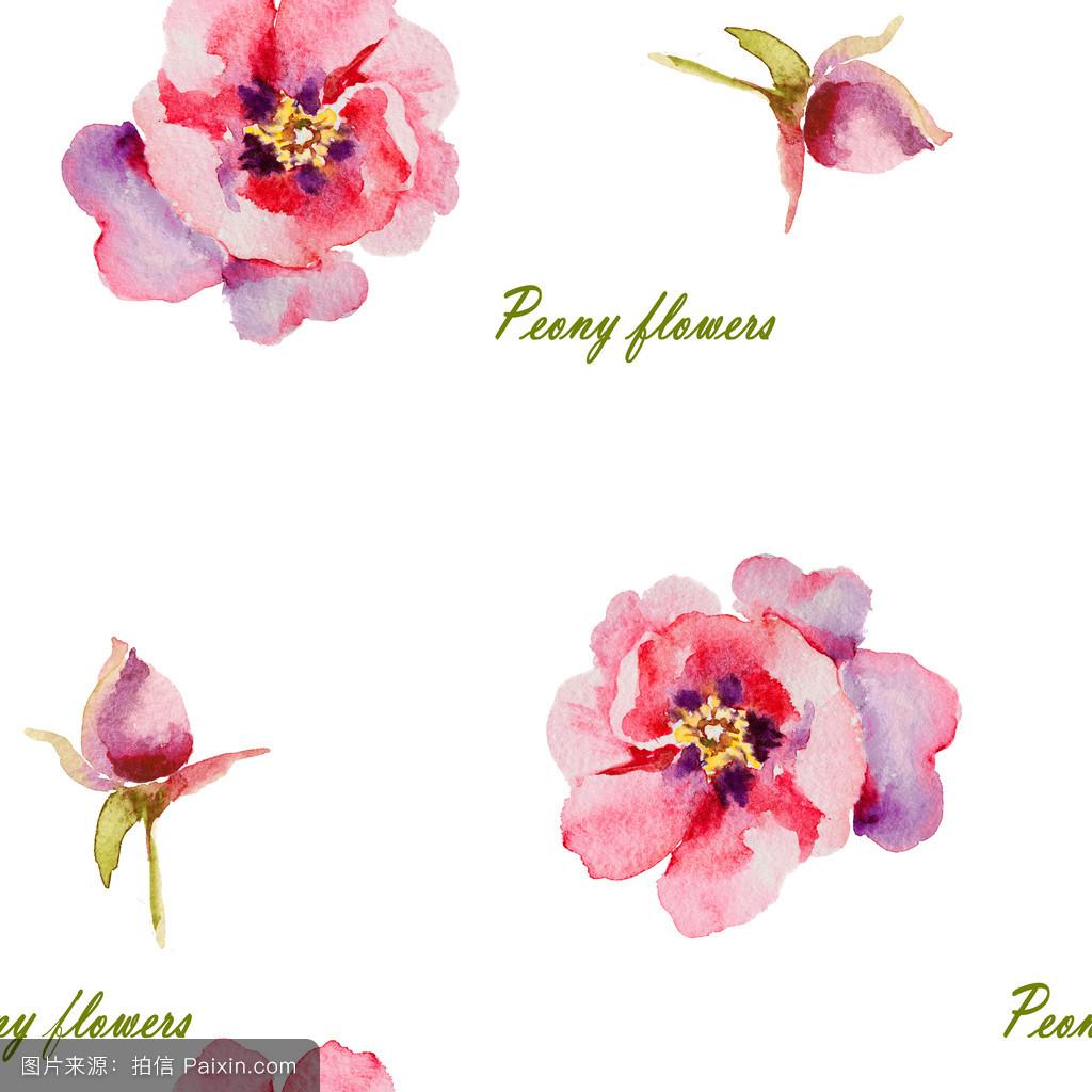 水彩画,数字花卉画,开花,丰富多彩的,牡丹,紫罗兰,花的,艺术,剪贴画图片