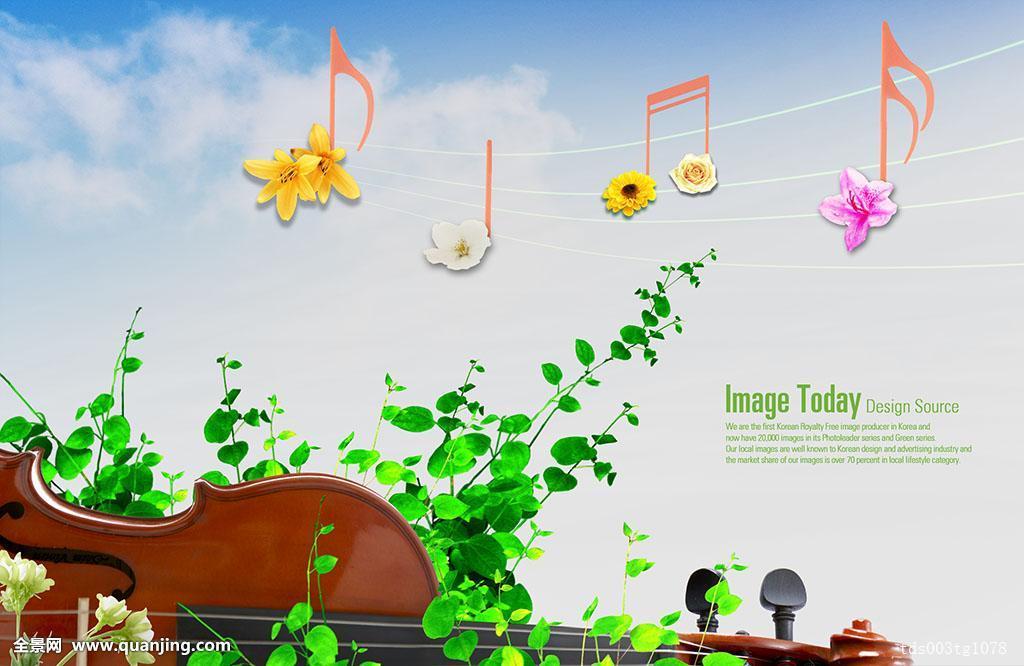 连翘属植物,花,设计,文化,小提琴,背景,春天,乐器,艺术,音乐,音符图片图片