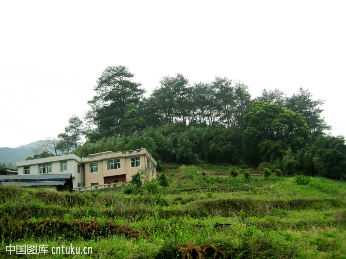 福建龙岩梅花山自然保护区