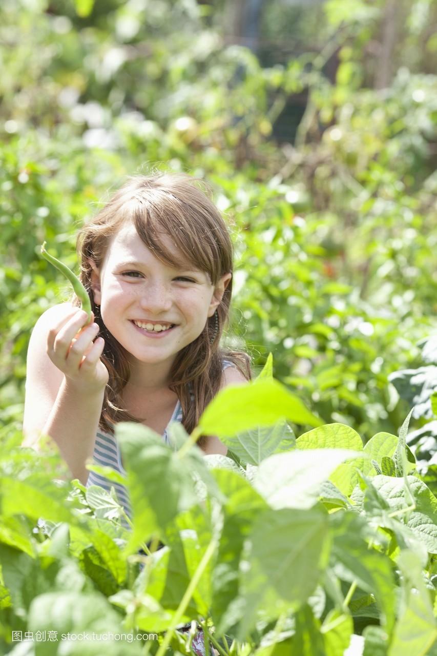 收获,裁,白种人,豆荚,纯净,对焦,孩子,叶子,幸福,小孩子,童年,平头图片