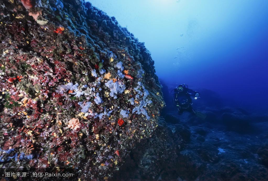 �mu�6_w.照片;2006年6月13日,潜水员(胶片扫描)-编辑