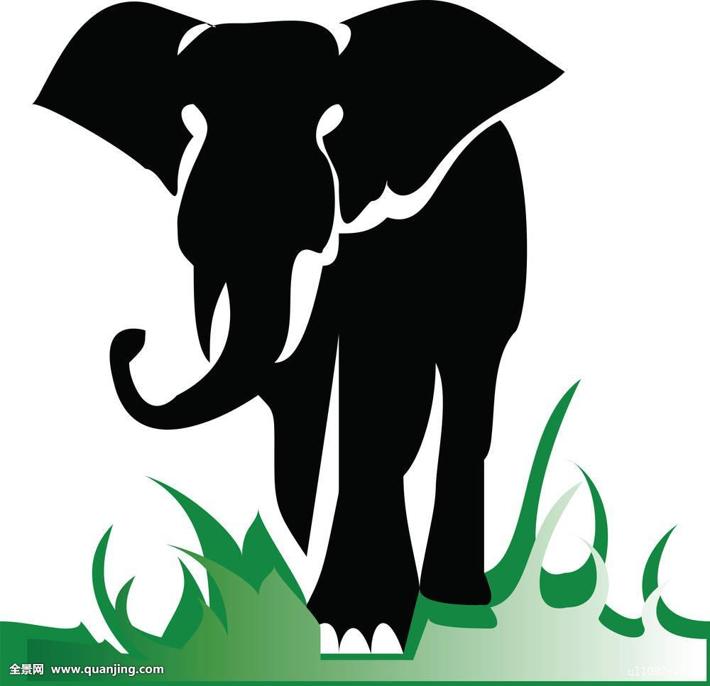 绿色,非洲,艺术,亚洲,大,黑色,黑白,卡通,生物,装饰,设计,绘画,大象图片