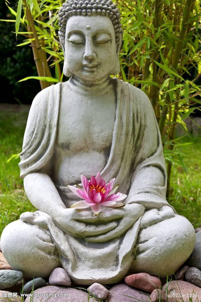 佛,雕塑,荷花,竹子,叶子,背景图片