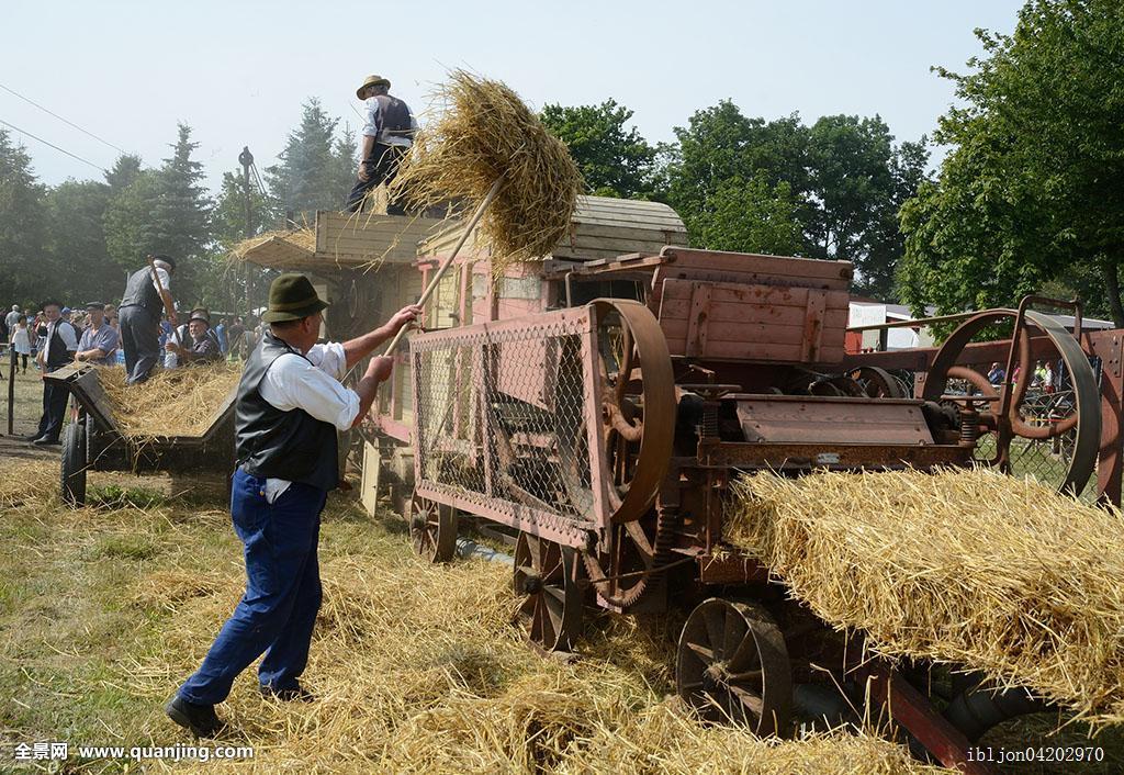 一个人,农耕,农业,大捆,庆贺,白天,雇员,农民,农事,机械,机器,农工图片
