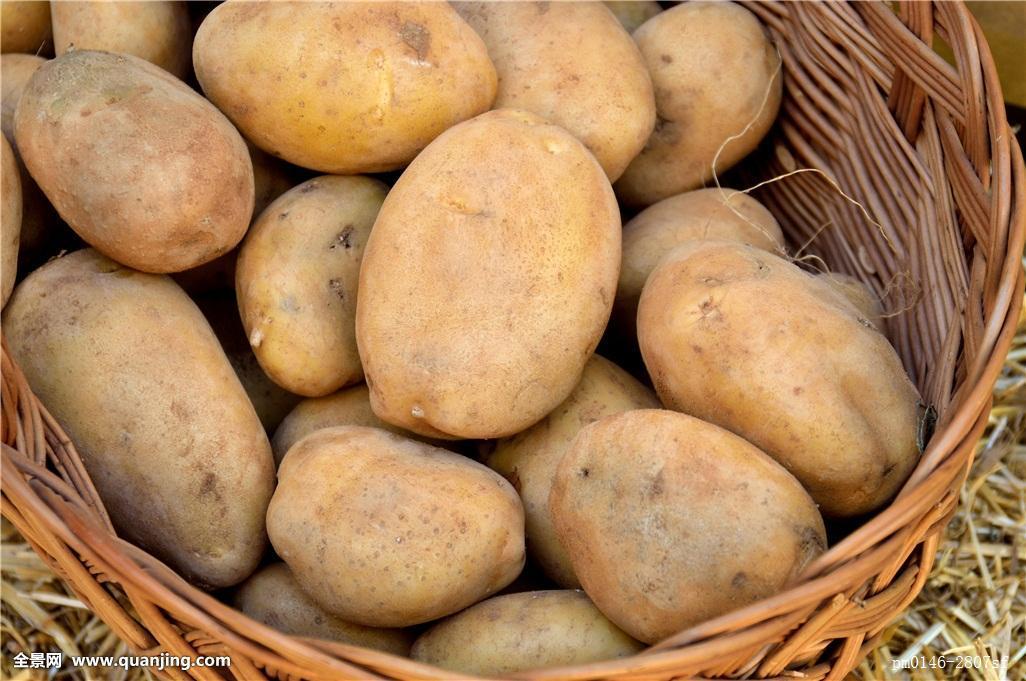 tudou_食物,食粮,篮子,特色,地球,星球,世界,新鲜,土豆,健康