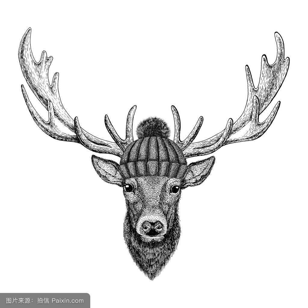 几何鹿纹身图片展示