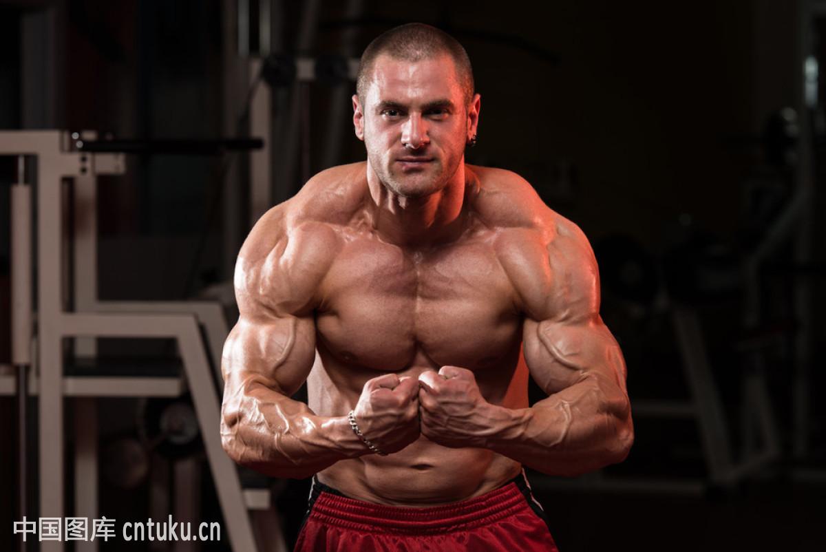 肌肉_成年人,对称,腹肌,肱二头肌,鼓起肌肉,室内,健康的,健身俱乐部,举重