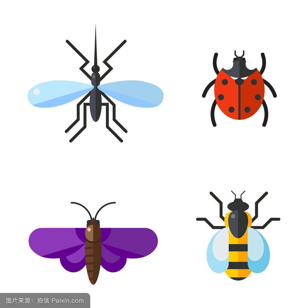 蝴蝶符号复制图片