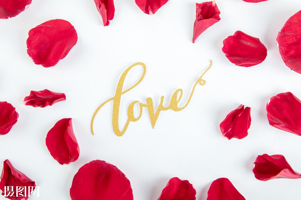 玫瑰花,花瓣,玫瑰花瓣,蔷薇花,月季,幸福,鹊桥,牛郎,织女,祝福,心形图片