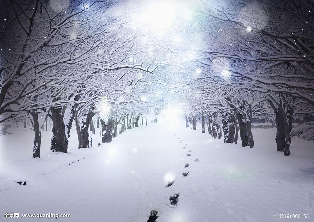 雪��/~���x+�x�&�7:d��_背景,冬天,风景,脚印,雪路,雪,树