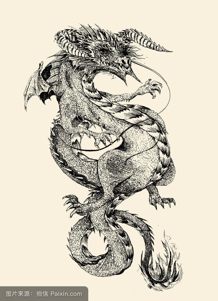 神话,部落,模式,标志,空手道,符号,传统的,美丽的,生肖,财富,龙,头图片