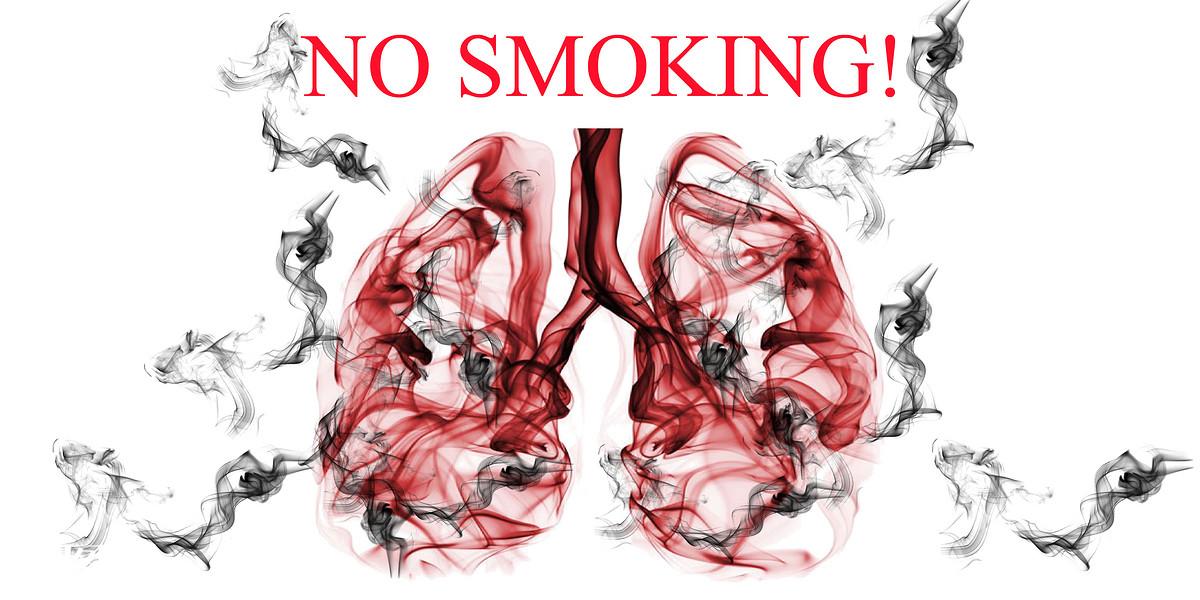 世界无烟日,禁烟,烟雾,健康,生活方式,创意,心脏,心肺,,烟草,吸烟图片