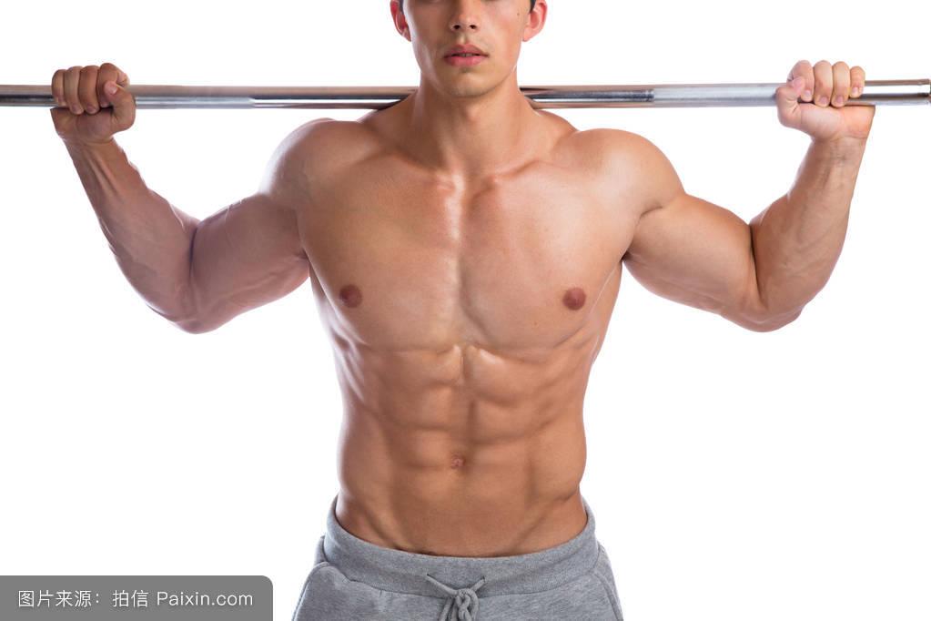 肌肉_健美健美的肌肉健美建设abs强