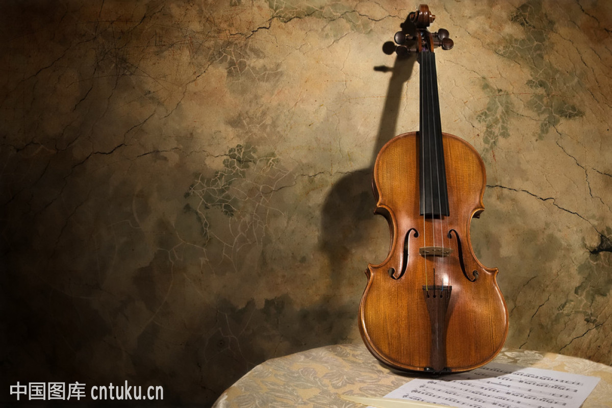 文化,复古,古典乐,管弦乐队,黑色,乐器,琴弦,小提琴,艺术,音乐,装饰图片
