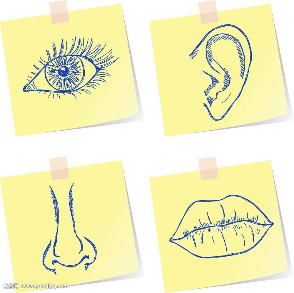 艺术,身体,收集,设计,涂写,绘画,耳,眼,脸,听,人,象征,插画,嘴唇,看图片