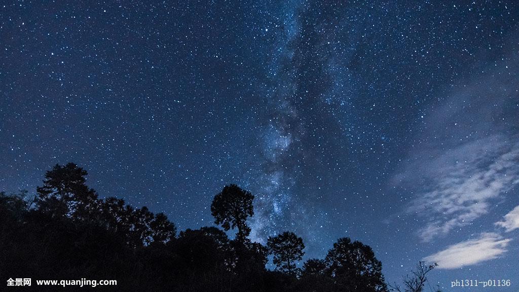 仰视森林 长景图 夜景分享展示图片图片