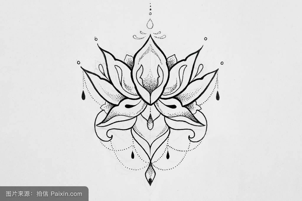 美女,要素,和谐,素描,佛教,优雅的,插图,装饰,荷花写生,花丝,纹身图片