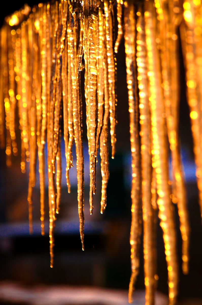 冰挂,冬天,冰柱,太阳,冰凌,金色阳光