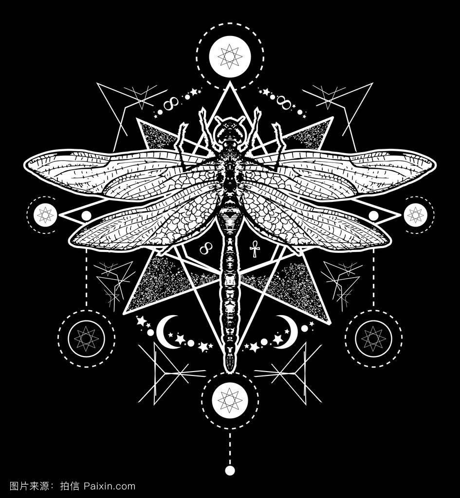 昆虫学,符号,时尚的,宗教,生肖,夏天,飞,自然,矢量,签名,纹身艺术图片