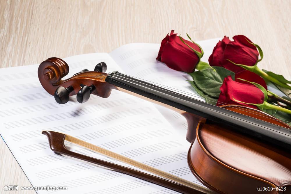 小提琴,玫瑰,音乐,书本图片