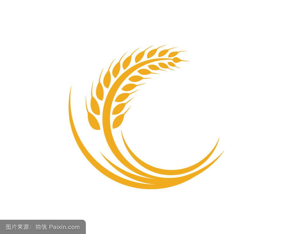 穗,标志,有机的,符号,新鲜的,市场,黄色的,小麦,农事,收获,粮食,签图片