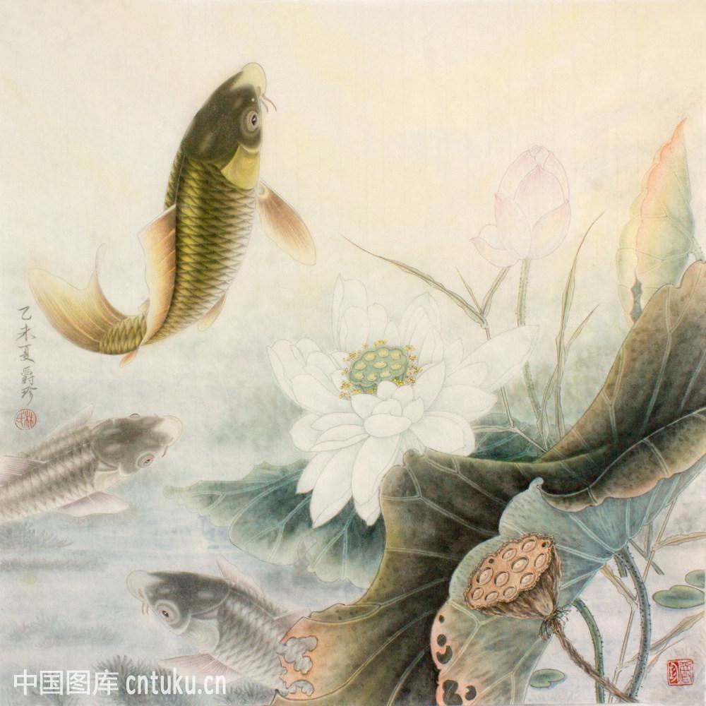 国画鱼_国画,鱼,荷花