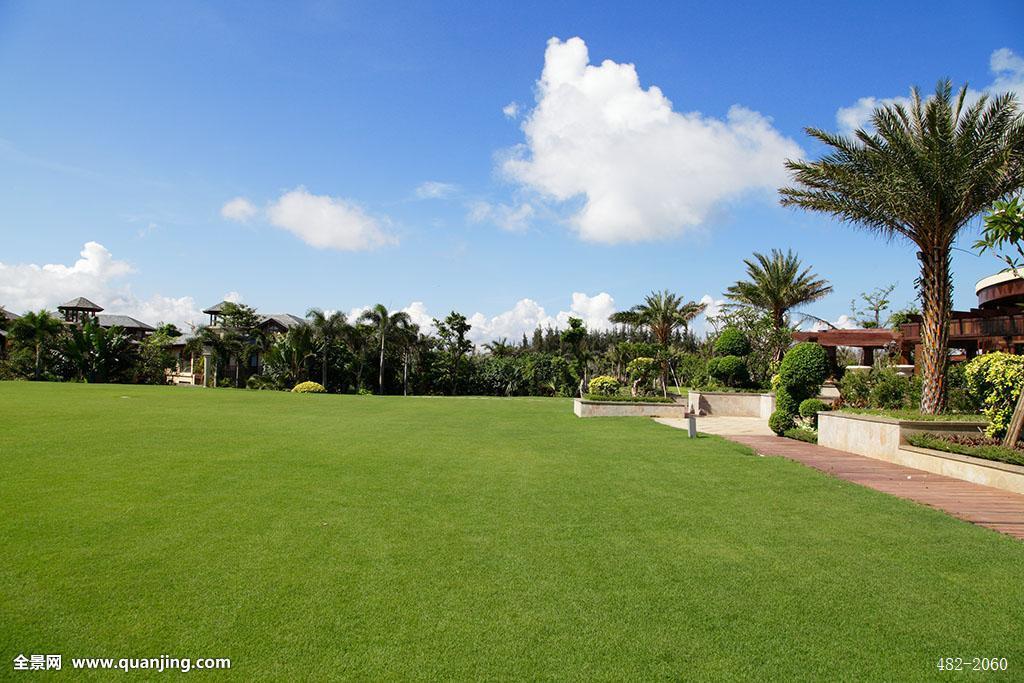 亚洲,东亚,草,植物繁盛,非都市风光,蓝天,景点,草地,绿地,路,道路图片
