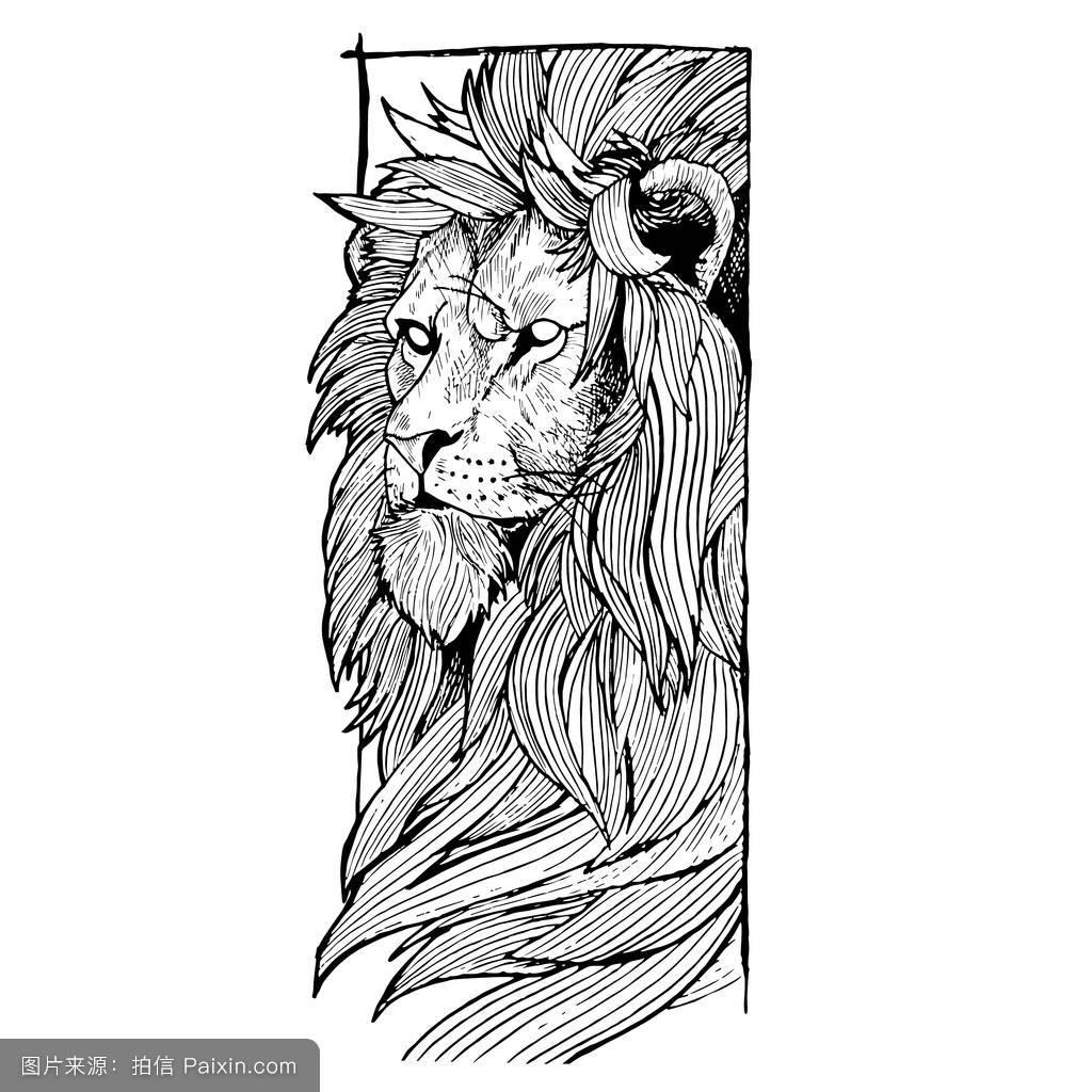 狮子座纹身星空图挽回展示白羊座女如何分享图片