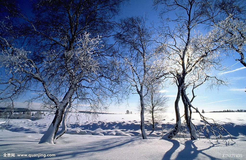 比利时,欧洲,冬天,35毫米图片